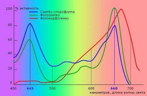 График роста от светового спектра
