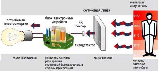 На фото: Схема работы инфракрасного датчика